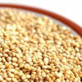 quinoa image header