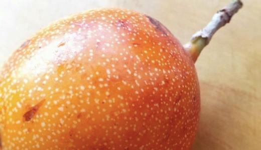 南米原産パッションフルーツ!granadilla(グラナディーヤ)の味と食べ方