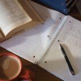 study header