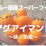 【スーパーフード】アメリカで大人気ゴールデンベリーことアグアイマント!味や効能